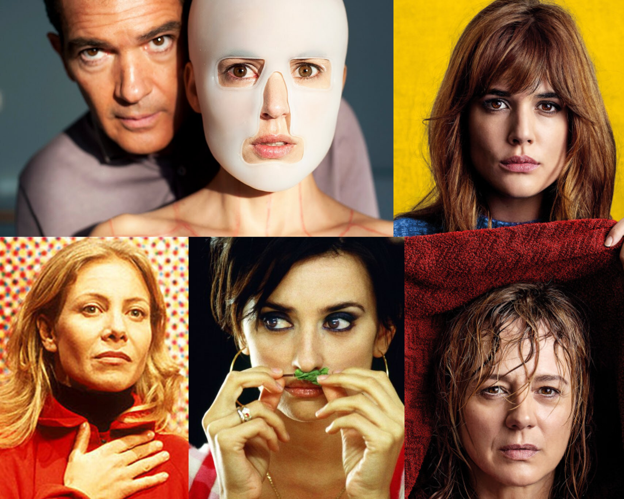 Almodovar film series